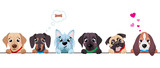 Cute dogs border set. Funny dog best friends. Happy friendship day. Vector illustration isolated on white background