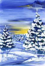 Winter Forest. Lush Fir Trees ...