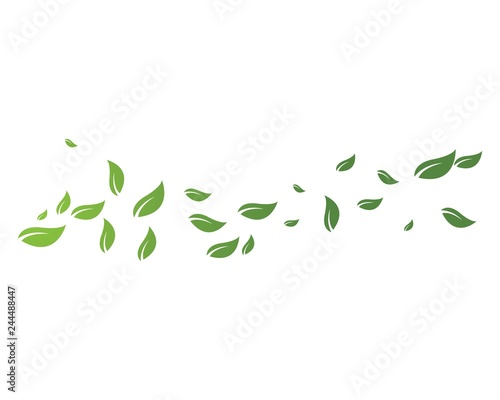 Obraz green leaf ecology nature element - fototapety do salonu