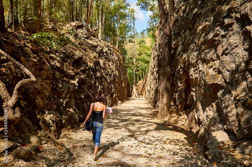 Fotografie, Tablou  Back side of young traveler in the deep forest, Hellfire Pass at kanchanaburi, T