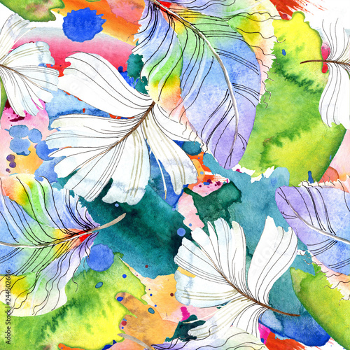 kolorowe-ptak-piorko-z-skrzydla-na-bialym-tle-akwarela-rysunek-moda-aquarelle-na-bialym-tle-bezszwowy-tlo-wzor