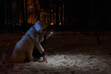 A Woman With A Dog Is Looking For A Lost Thing By The Light Of A Flashlight Outside In The Winter.
