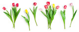 Fototapeta Tulipany - tulip flowers set isolated on white with clipping path included