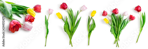 Spoed Foto op Canvas Tulp tulip flowers set isolated on white with clipping path included