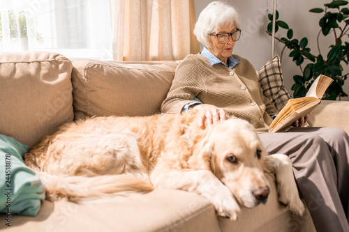 Portrait of senior woman reading book and hugging pet dog sitting on couch at home, copy space - 244518878