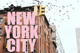 """miejska scena z ptakami latającymi nad budynkami z różowym napisem """"Nowy Jork"""" w Nowym Jorku, USA - 244528229"""