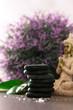 Spa massage basalt stones