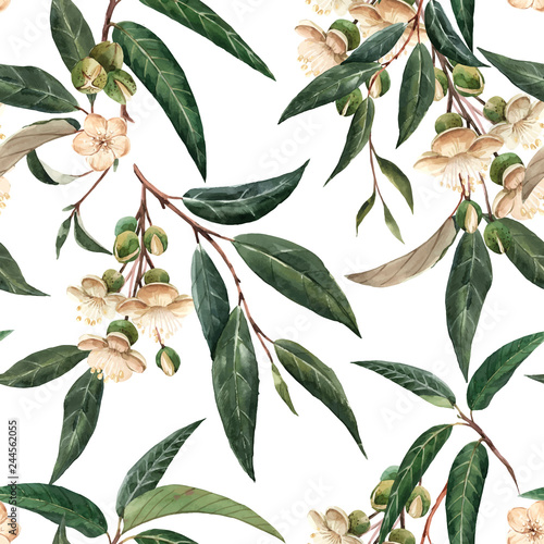 Plissee mit Motiv - Watercolor durian tropical vector seamless pattern (von zenina)