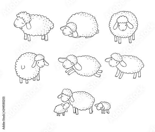 Fotografía Cute cartoon sheep set