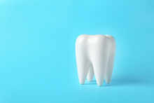 Ceramic Model Of Tooth On Colo...