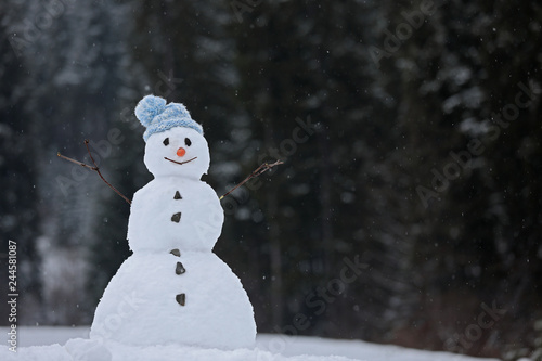 Obraz na plátně Adorable smiling snowman outdoors on winter day. Space for text