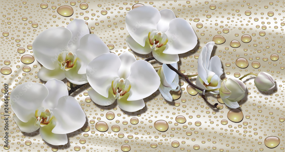 Fototapety, obrazy: 3d wallpaper, orchids, water drops on silk background. Celebration 3d background