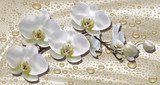 Fototapeta Storczyk - 3d wallpaper, orchids, water drops on silk background. Celebration 3d background