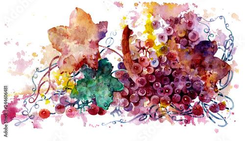 Fototapeta grapes on white background obraz na płótnie