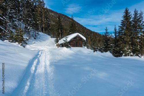 Fotografie, Obraz  Holzhütte im verschneiten Wald