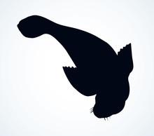 Seal. Vector Drawing