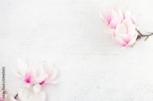 Fotografia Magnolia flowers flat lay scene