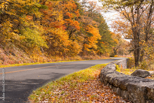 Autum along the Blue Ridge Parkway Canvas-taulu
