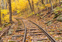 Abandoned Railroad Tracks In The Forest
