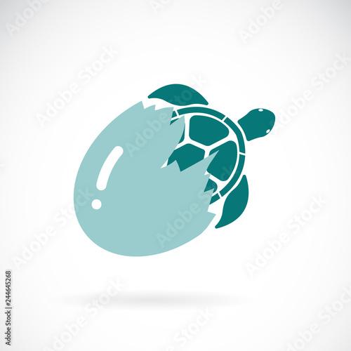 Fototapeta premium Wektor żółwia wychodzącego z jajka na białym tle. Dzikie zwierzęta. Łatwe edytowanie warstwowych ilustracji wektorowych.