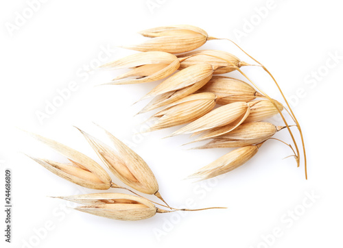 Autocollant pour porte Graine, aromate Oats spike in closeup
