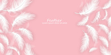 Feathers Background Vector Rea...