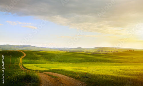Spoed Foto op Canvas Beige spring farmland and country road; tuscany countryside rolling hills