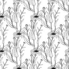 Hand Drawn Medical Plant Sketc...