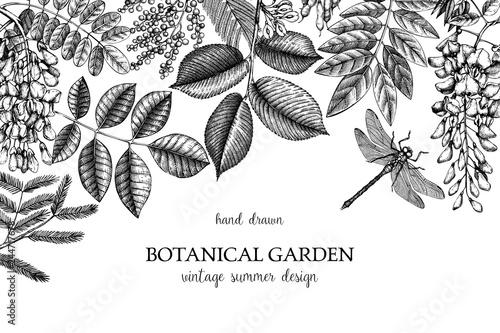 Foto  Vector design with hand drawn branch, leaves, seeds, cones, fruits sketch