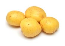 Potatoes Vegetable Isolated On...