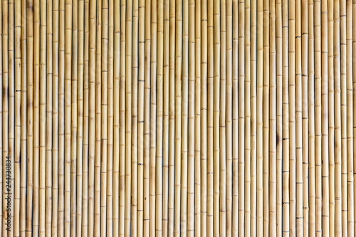 bamboo wall background Fototapeta