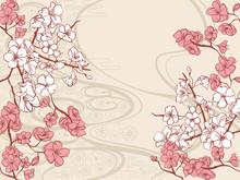 手書き風の桜の和柄の背景