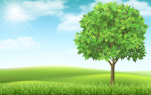 Tree On Country Spring Landscape Background. Green Meadow And Blue Sky. Natural Landscape With A Calm Beautiful Scene.