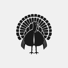 Turkey Male Silhouette Front View. Farm Animal Icon