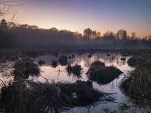 Sunset Waterlogged Misty Meadow