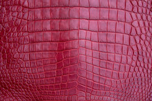 Close Up Of Red Burgundy Crocodile,Alligator Belly Skin Texture Use For Wallpaper Background.Luxury Design Pattern For Business And Fashion.