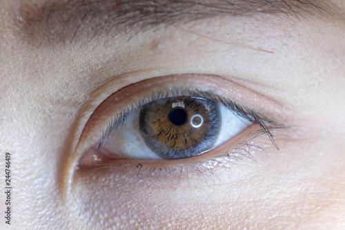 Fototapeta  Close up of beautiful woman eye and contact lens.