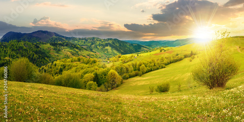 Montage in der Fensternische Honig panorama of countryside in mountain at sunset. beautiful landscape in springtime