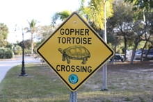 Gopher Turtle Crossing Sign