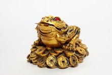 Golden Frog Statue