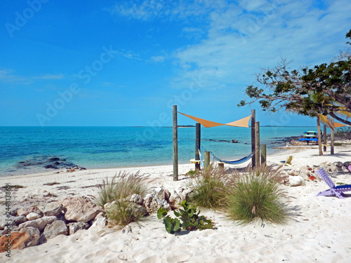 Photo  A colorful, Bahamas beach scene of sea grapes and grass clumps near hammocks hung under triangle awnings, and beach chairs on the shore of calm, turquoise waters stretching into a clear blue sky
