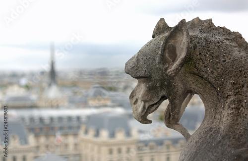 Fotografia  gargoyle shows the language in the church of Notre Dame