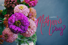 Pink Zinnia Flowers On Chalkboard Background With Mother's Day Text.