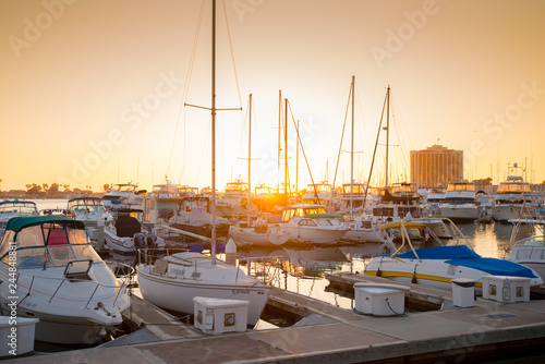 Photo  San Diego Harbor, boats, sunset, palm trees, water