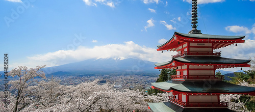 Chureito red Pagoda with beautiful Cherry Blossom or pink Sakura flower tree and Mount Fuji against blue sky. Spring Season at Fujiyoshida, Japan. landmark and popular for tourist attractions