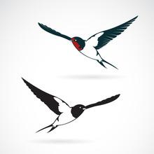 Vector Of Bird Swallows Design On White Background., Bird Icon., Wild Animals. Easy Editable Layered Vector Illustration.