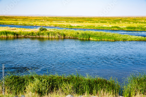 Cuadros en Lienzo Seedskadee National Wildlife Refuge in Wyoming, USA