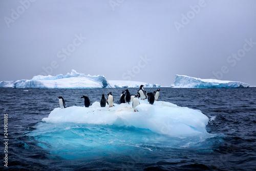 Foto auf Gartenposter Antarktika Snow, ice, glaciers, ocean water, clouds and penguins - a typical scene for Antarctica tourism