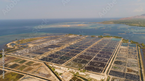 Fotografiet shrimp farm, prawn farming with with aerator pump oxygenation water near ocean