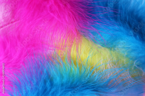 Photo Colorful feather background, pink, blue and yellow colors